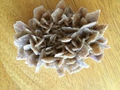 Gypsum Flower