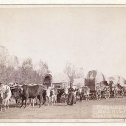 "Wagon train ""freighting"" west."