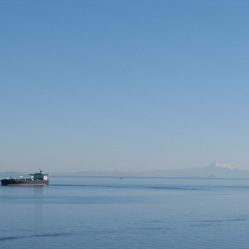Mount Rainer in the background